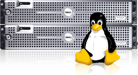 Linux VPS Hosting in India | Linux VPS Server Hosting